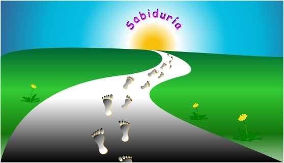 La sabiduría es la Luz que resplandece al final del Camino