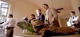 Esas iguanas...