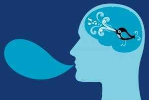twitter cerebro