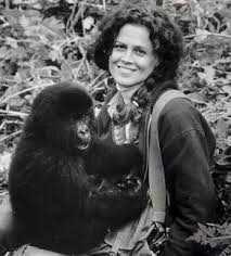 Dian Fossey weaver