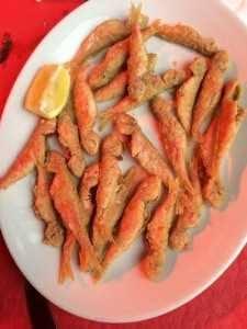 Copa salmonetes