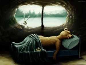 Oso hibernando