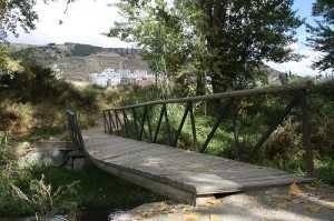 Estado de otros puentes del entorno bichero
