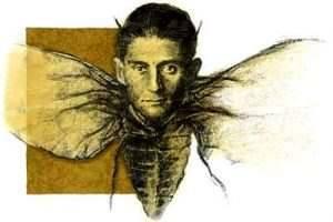 Escarabajo kafka